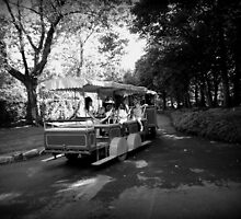 Park Train by dawnandchris