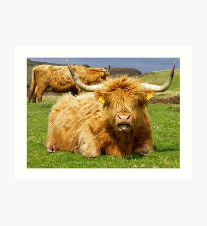 Tongue Hairy Coo Art Print