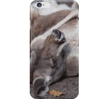 The Life of a Kangaroo- Scooby Roo iPhone Case/Skin