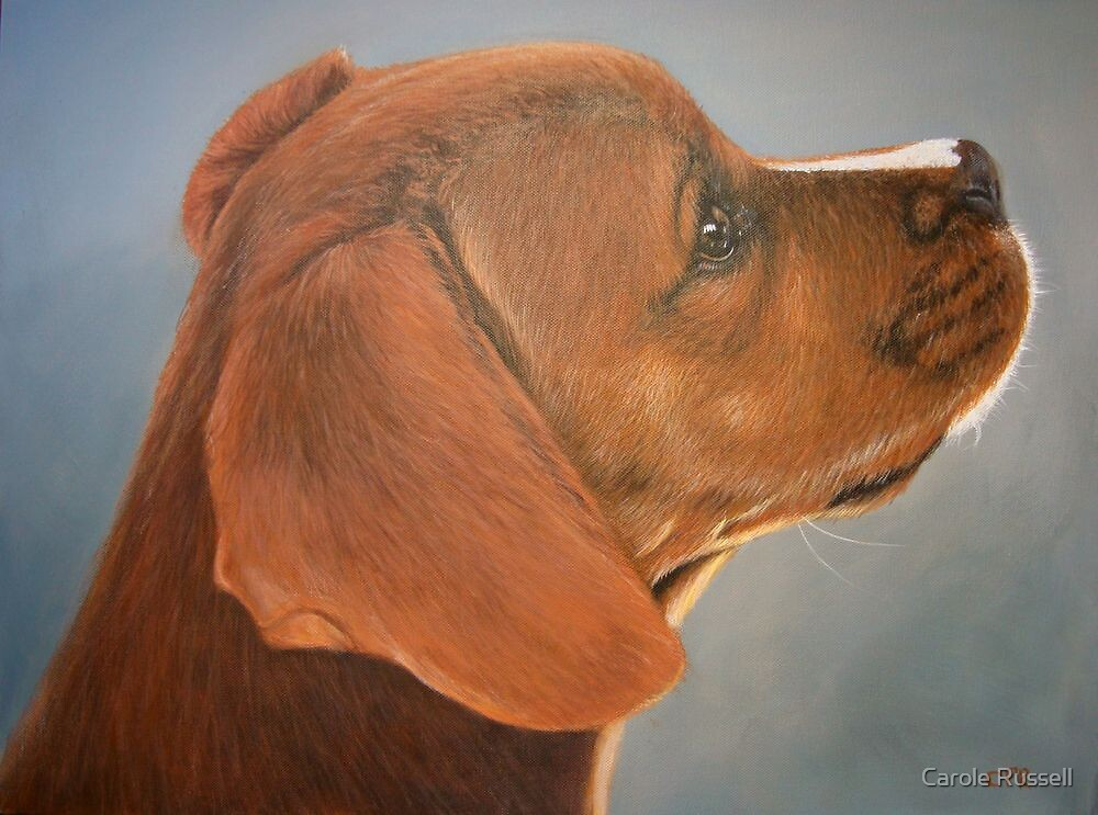 Puppy love by Carole Russell