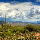 Visions of Arizona by Saija  Lehtonen