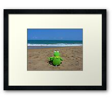 Beach Sea Sea view Water Lonely Frog Framed Print
