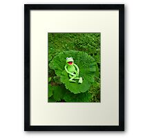 Butterbur Journal Large Nature Frog Kermit Framed Print