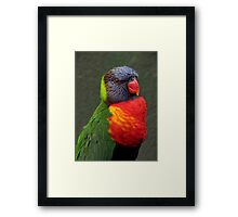 The World Is A Colorful Wonder ~ Part Fifty-One Framed Print