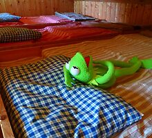 Frog Kermit Tired Sleep Bed by HQPhotos