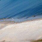 Shore Walking by Eva Kato