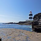 The Hook Lighthouse , Wexford, Ireland by Martina Fagan