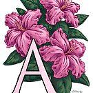 A is for Azalea - full image by Stephanie Smith