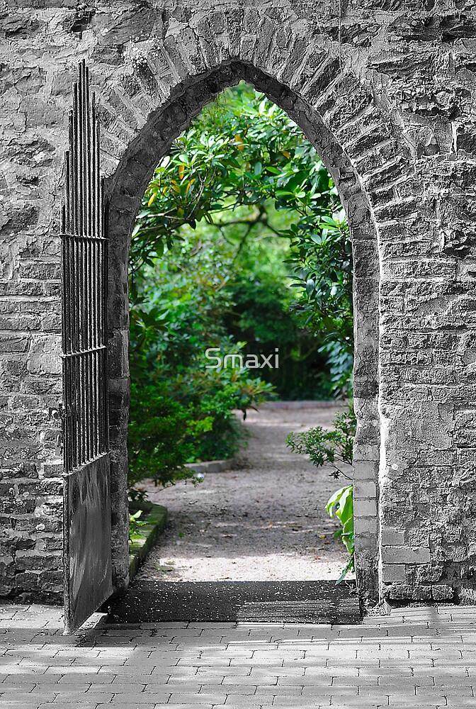 Through The Arch by Smaxi