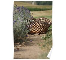 Loess Hills Lavender Farm Poster