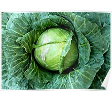 Cabbage Poster