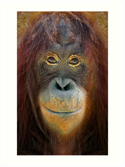 You Looking At Me by Patricia Jacobs DPAGB LRPS BPE4