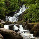 Torc Waterfall by Béla Török