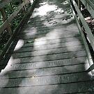 Tiffin Bridge by Jeanette Muhr