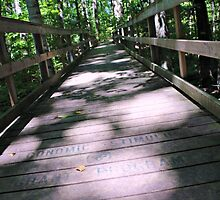 Tiffin Bridge by Jeanette Muhr