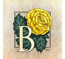 B is for Begonia Photographic Print