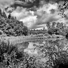 Stover in Black and White by Jay Lethbridge