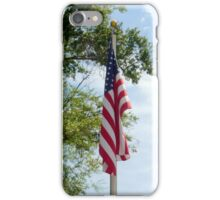 Old Glory (iPhone Case) iPhone Case/Skin