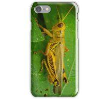 Yellow Grasshopper iPhone Case/Skin