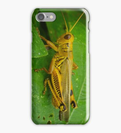 Yellow Grasshopper iPhone Case/Skin