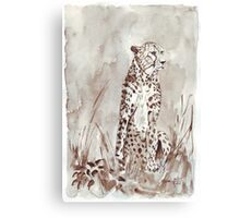 The Cheetah (Acinonyx jubatus)  Canvas Print