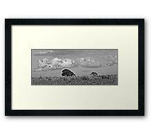 Cloudiness Framed Print