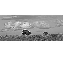 Cloudiness Photographic Print