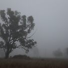 Hiding in The Mist by Saraswati-she