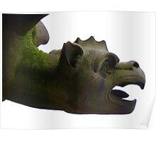 Gargoyle Dragon Mythical Creatures Ulm Münster Poster