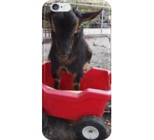 Goat Play- Lafayette iPhone Case/Skin