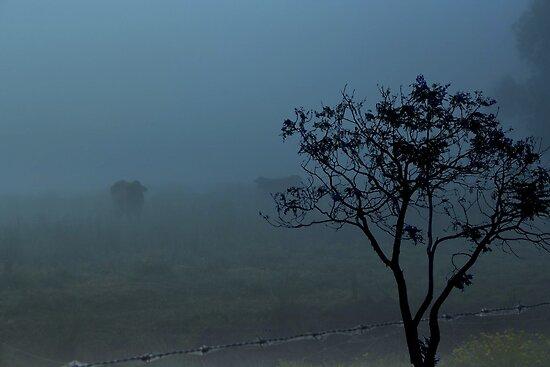 Beyond Blue by myraj
