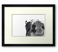 Whatchoo Doin'? Framed Print