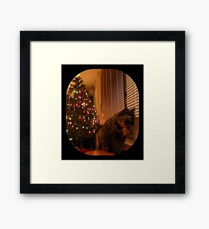 Christmas Kitty Waiting for Santa Framed Print