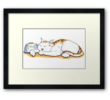 Pook the Protector Framed Print
