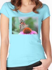 She's a Painted Lady (Vanessa Cardui on Echinacea) Women's Fitted Scoop T-Shirt