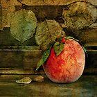 Peach by Barbara Ingersoll