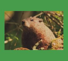 Close Encounter with a Groundhog Kids Tee