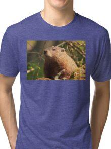 Close Encounter with a Groundhog Tri-blend T-Shirt
