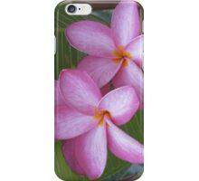 Pink Plumeria iPhone/iPod Case iPhone Case/Skin