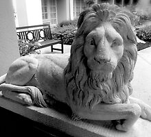 Lion Greeter  by Jonathan  Green