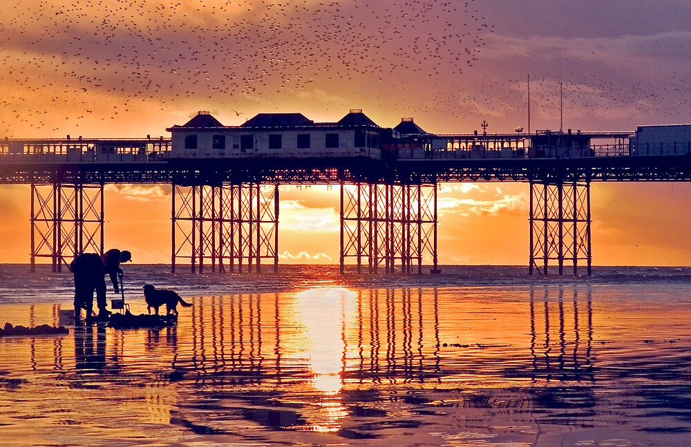 Starlings above Brighton Pier at Sunset by Heather Buckley