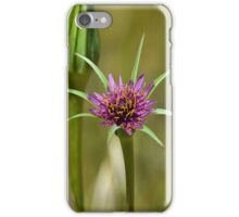 Dandelion in bloom iPhone Case/Skin
