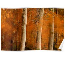 Autumn Tree Painting Poster