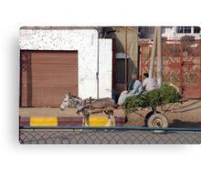 Transportation by donkey Canvas Print