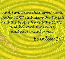 The People Feared the Lord, and Believed the Lord. . . by aprilann