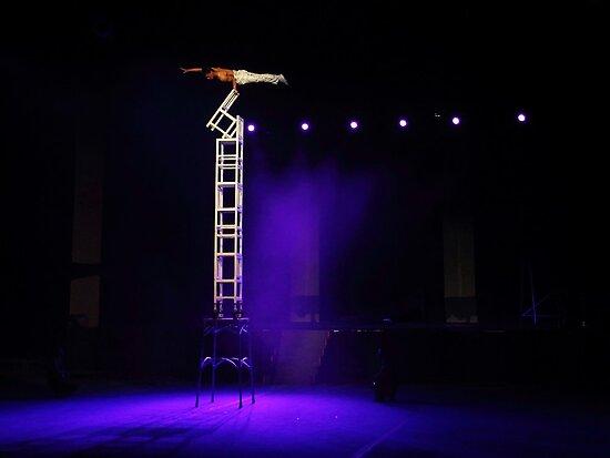 Peking Acrobats 1 by Tracy Friesen