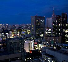 Tokyo at Night by Sue  Cullumber
