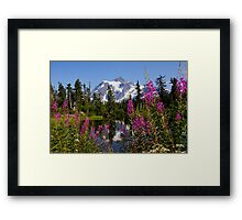 fireweed, picture lake, and mt shuksan, washington usa Framed Print