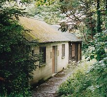 Cottages in Bath, England by Shoot16mm