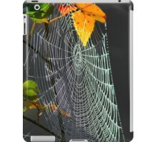 Autumn Web iPad Case/Skin